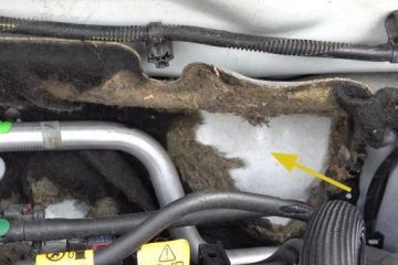 Corroded insulation in the engine compartment